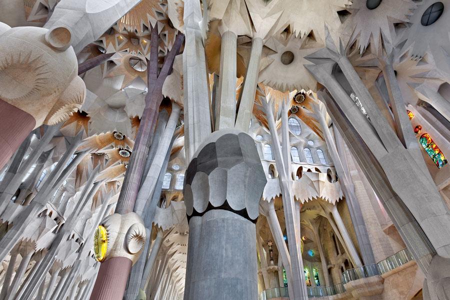 Columnas arbóreas de la Sagrada Familia