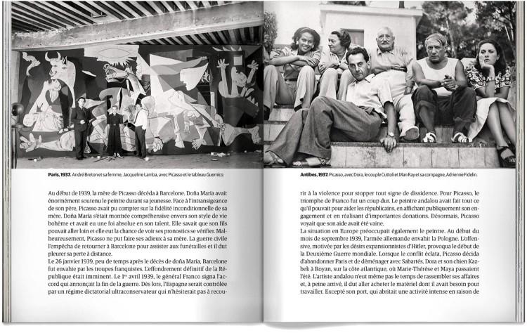 Biographie De Picasso Livre Francais Dosde Publishing